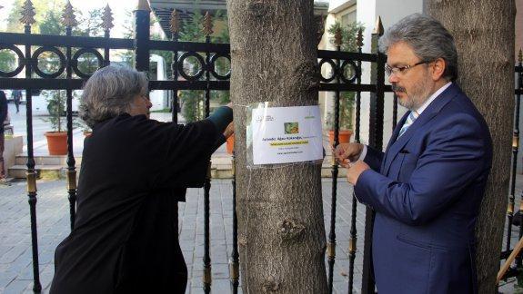 Ağaçların Adları-İstanbul-Projesi